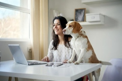 pet_home_office_28