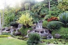 Jardim em Declive