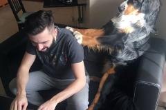 Home Office com Pet