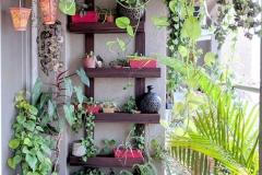 Sacada com Plantas