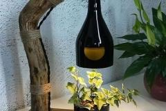 suculentas_garrafa_32